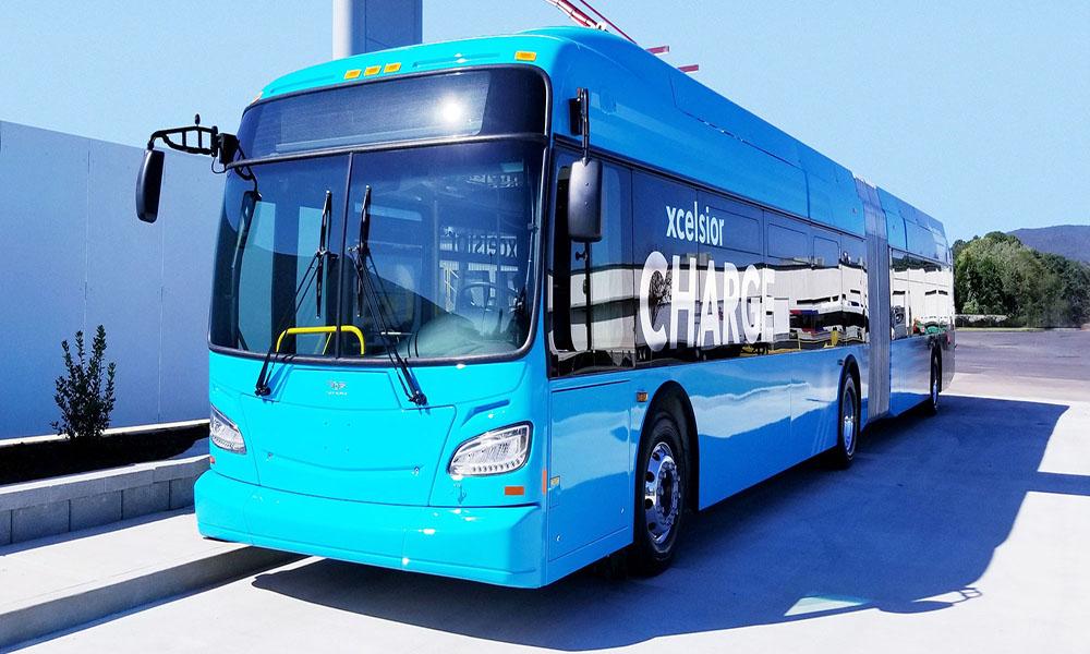 Bằng E được lái xe bus