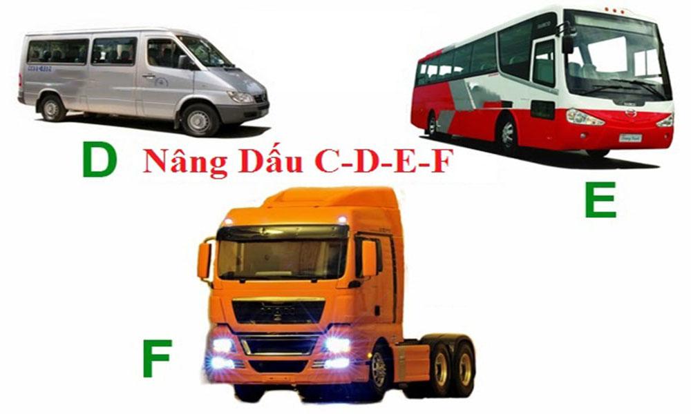 Các loại bằng lái xe D, E, F